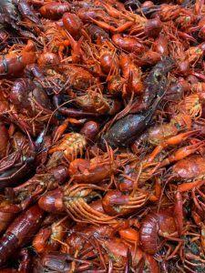 Huge batch of boiled Crawfish